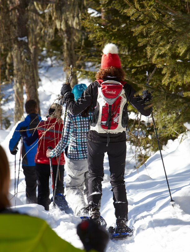 guided snowshoe hike tyrol